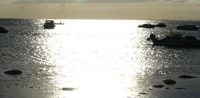 Hotel Suadiye'den Sahil Görünümü